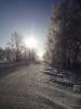 Природа Мордовии. Зимняя дорога